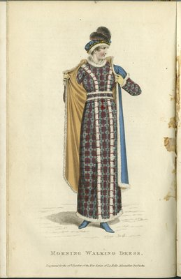 Morning Walking Dress, Fashion Plate from La Belle Assemblée, or Bell's Court and Fashionable Magazine
