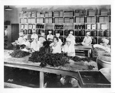 Helena Rubinstein with Italian parsley